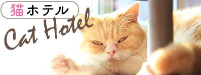 猫専用のご宿泊プラン